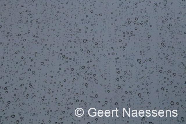 Veel regen op komst!