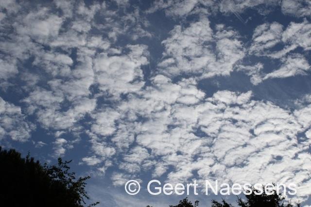 Veel wolken, kans op wat lichte regen, maar wel warm