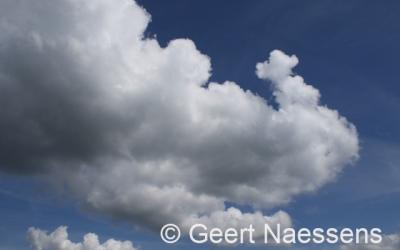 Wisselen tussen wolken en zon, wel zacht en winderig