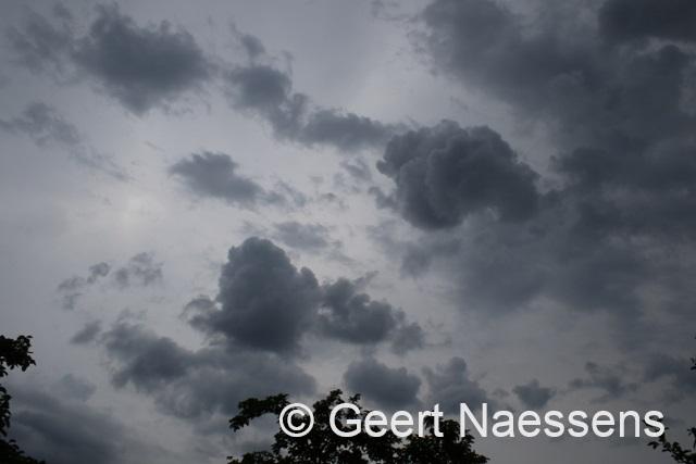 Veel wolken, minder warm en vooral later weer buien / regen
