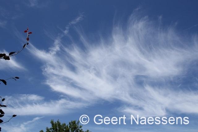 Zomers warme vrijdag, wel eerst wat wolken, later meer zon