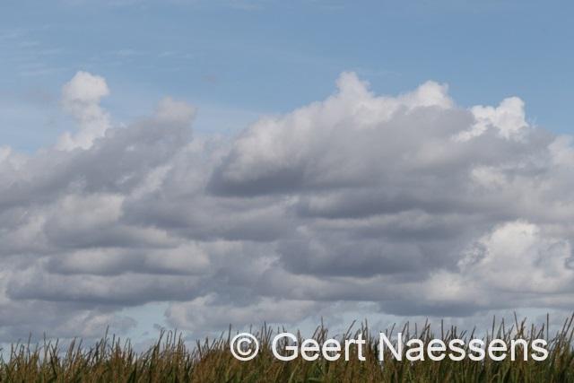 Mix van wolken en zon, we houden het droog met vrij normale maxima
