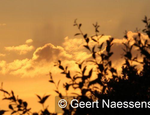 Veel wolken, winderig, koel en tijdelijk wat regen of enkele buien